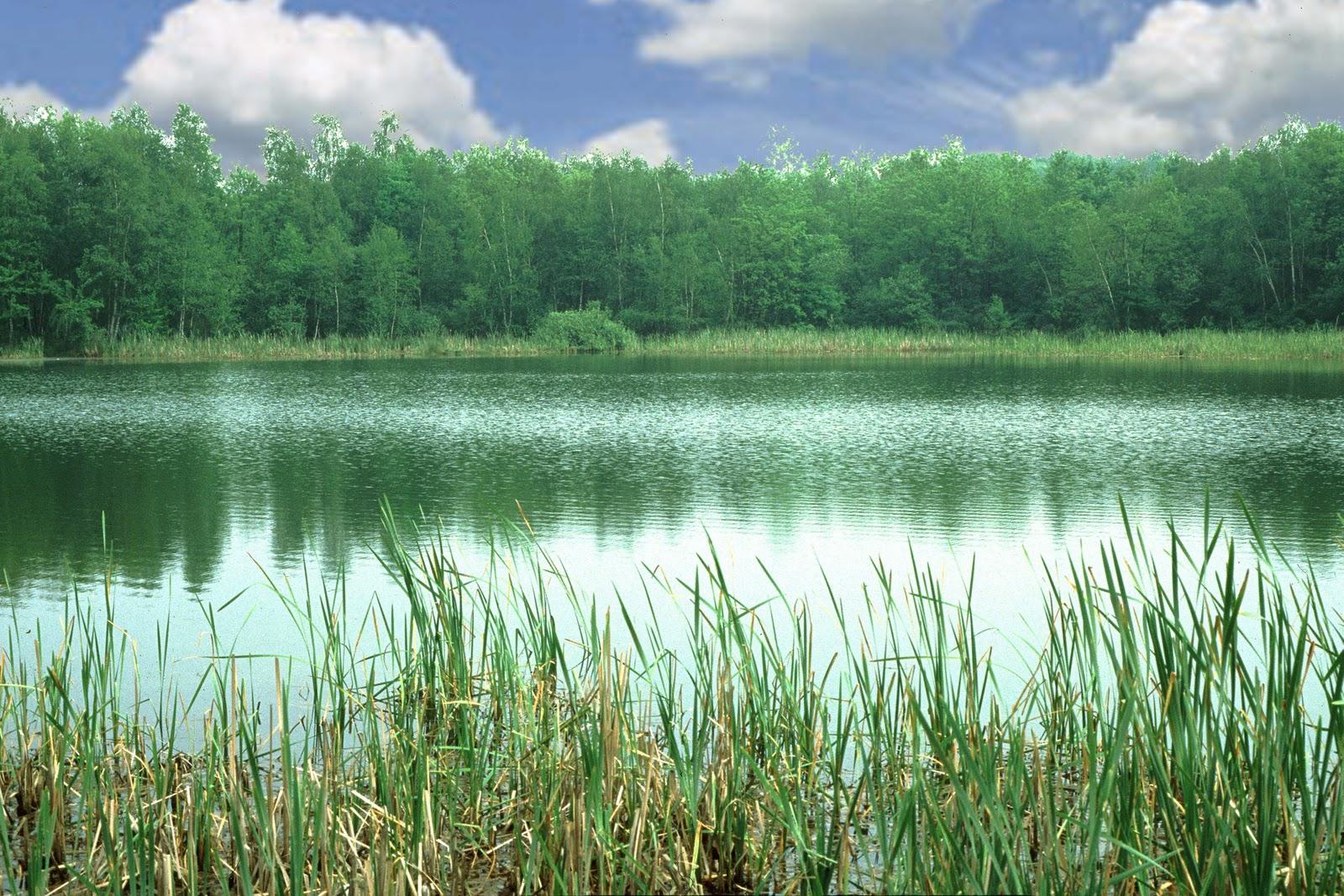Oasi lentate sul seveso oasi lentate parco delle groane for Boffi cucine lentate sul seveso