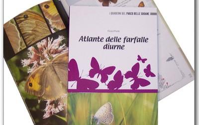 Atlante delle farfalle diurne