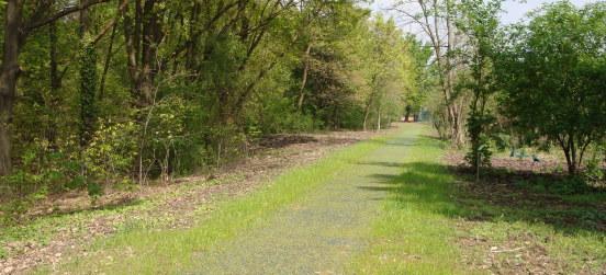 Inaugurato sabato 18 aprile il percorso botanico a Garbagnate
