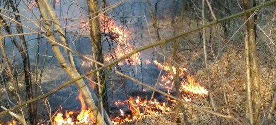 Rischio incendi, lettera del presidente ai sindaci