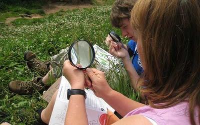Sabato 25 giugno il Bioblitz del Parco Groane