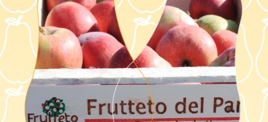 La raccolta delle mele al Frutteto di Ceriano