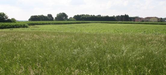 Il suolo, preziosa risorsa non rinnovabile. L'incontro al Parco
