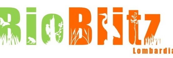Domenica 13 settembre c'è il BioBlitz