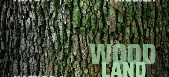 Al Parco delle Groane arriva Woodland