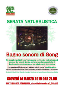 SERATA NATURALISTICA GONG