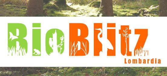 Il programma del BioBlitz del Parco Groane