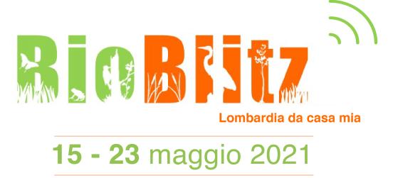 Dal 15 al 23 maggio c'è il BioBlitz …da casa mia